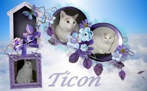 2013-10-14-ticon-300x187