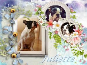 2013-10-16-juliette-300x225